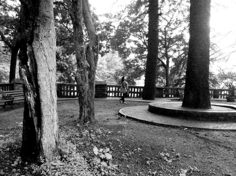 A traveller soaks in the tranquility and peace of an old churchyard in Kasauli, Himachal Pradesh, India.