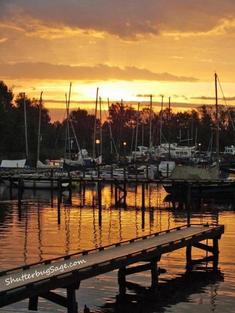 Marina in Naarden at Dawn
